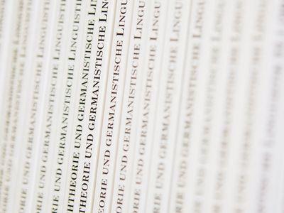Bände der Reihe Sprachtheorie und germanistische Linguistik.
